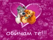 Любовта е ... сладка като тези кученца