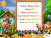 детска- ЧИД Мише