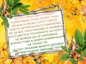 Честит Имен ден Стефче!!!