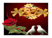 Неостаряваща нежна любов! Два Гълъба!
