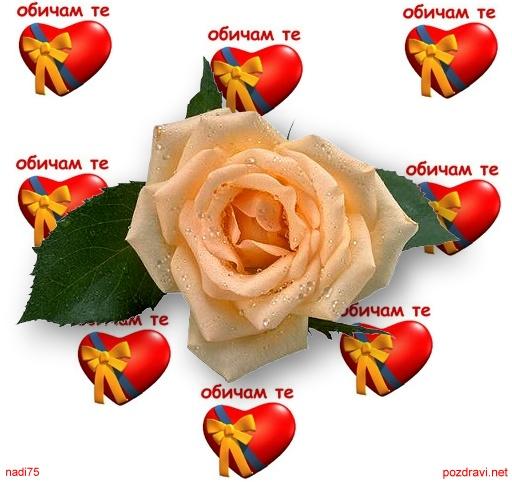 Любовта е живот!