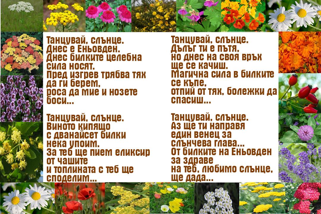 Еньовден във стих