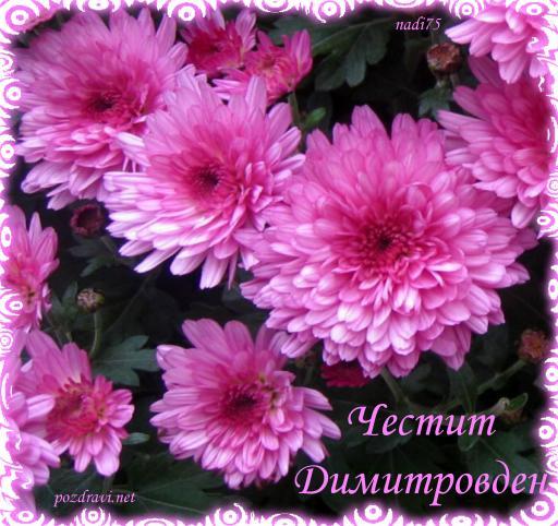 Резултат с изображение за ДИМИТРОВДЕН