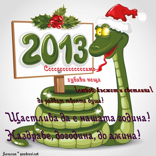 2013 - година на Змията