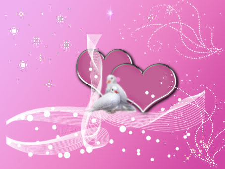 Две влюбени бели гълъбчета!