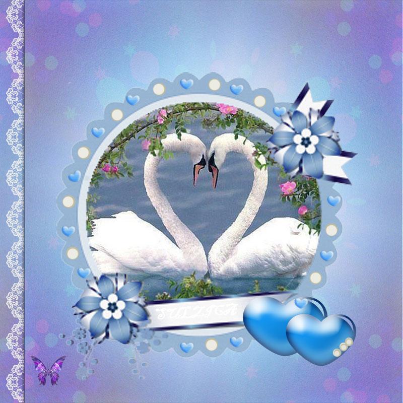 Нека любовта ни бъде птица бяла!
